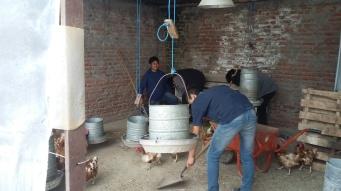 Foto 1: Alumnos realizando la limpieza de los gallineros